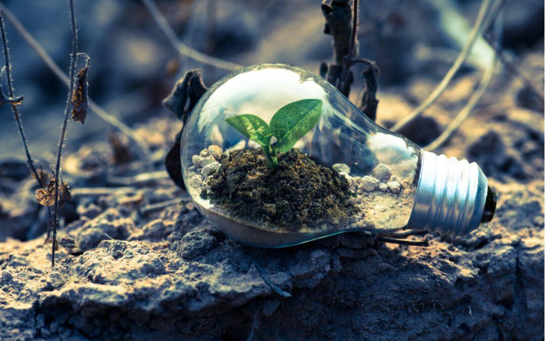 Hoe kan je een milieueffectrapportage laten opstellen?